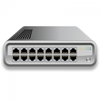 Dedicated Virtual Network Switch